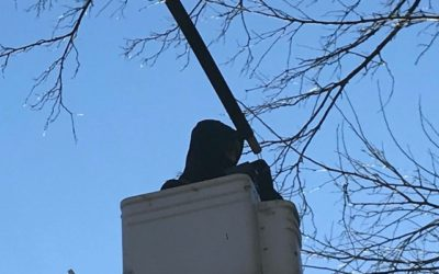LED Pole Lights Retrofit – Grace Church, Virginia.